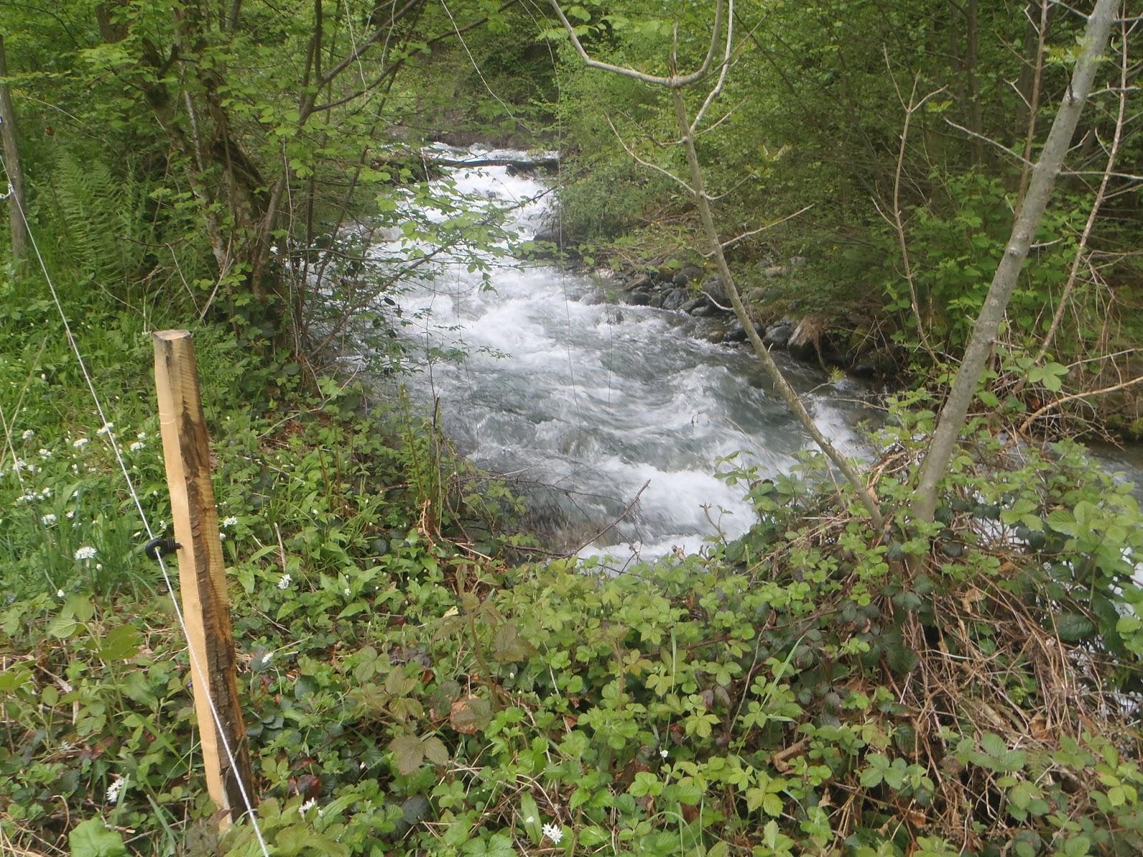 Blog du Guiers: Pêche au toc sur le Doménon