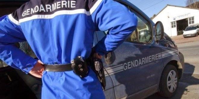 Isère : ils kidnappent un chien et en réclament 150 euros