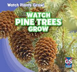 bookcover of WATCH PINE TREES GROWS  (Watch Plants Grow!)  by Therese M. Shea