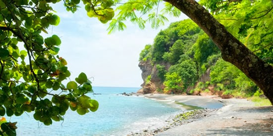 View of the spectacular beach, Dominica
