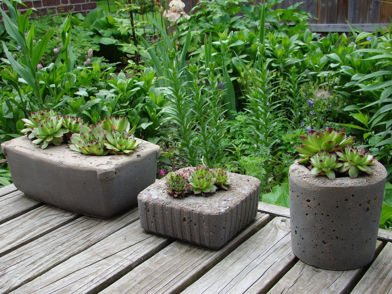 Cement Planters Make Great Gifts Mountain Breaths