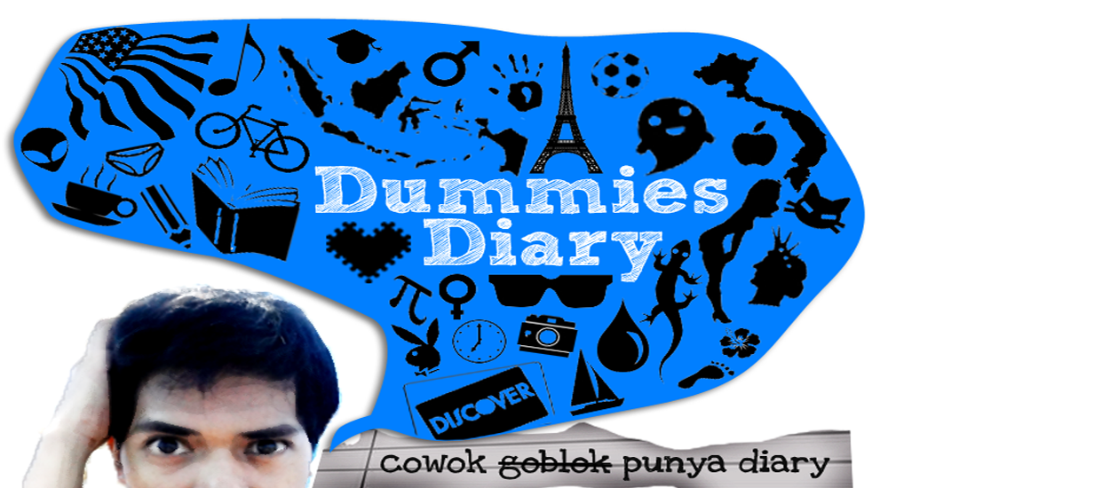 Dummies Diary