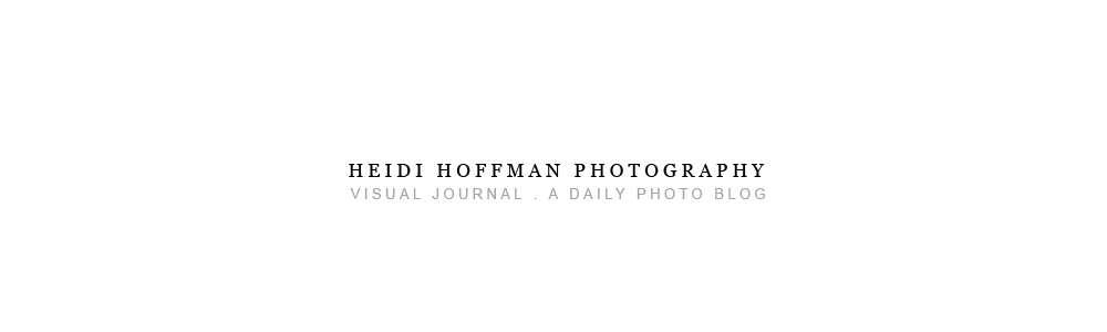 HEIDI HOFFMAN : VISUAL JOURNAL