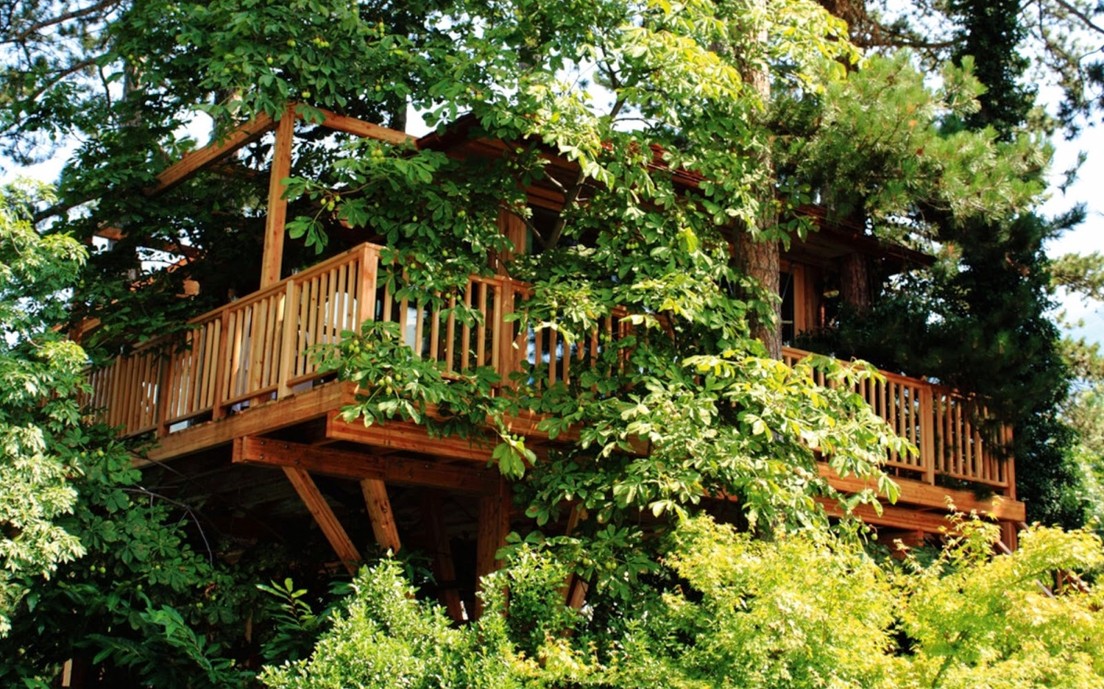 Dormire in una casa sull 39 albero 5 proposte bellissime in for Avere una casa costruita sulla terra