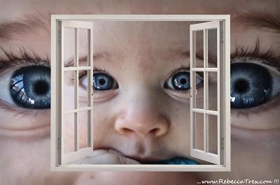 Attraverso la finestra 2013 rebeccatrex