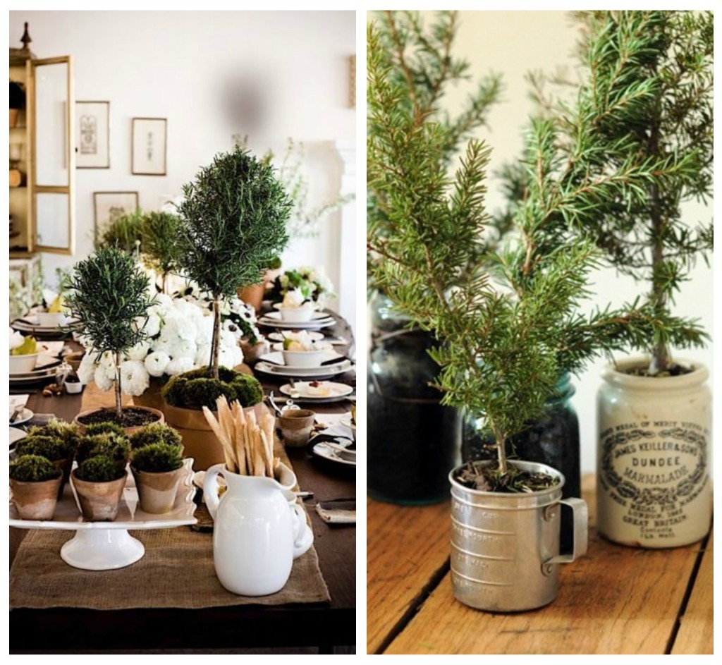 rosemary christmas trees Big to small as you work your way up your base, start using smaller rosemary  sprigs to create a fluffy douglass fir style tree advertisement.