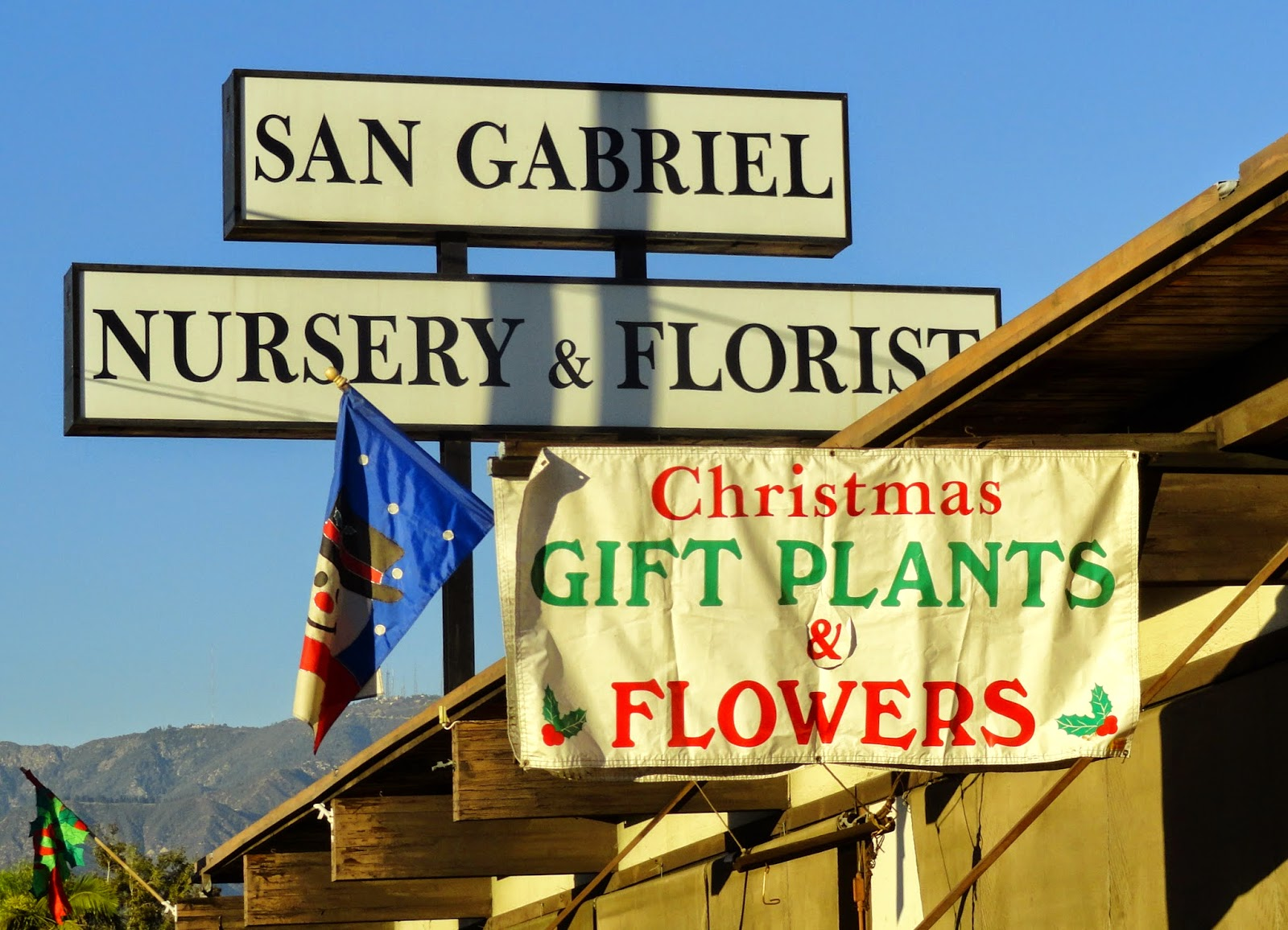 I Knew About San Gabriel Nursery Thanks To Hoov Answering A Question From Alison Nurseries Near The Huntington We Visited There Too And Yes