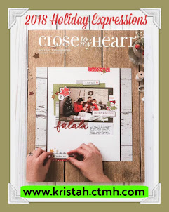 Get a FREE copy of the NEW Holiday Expressions Idea book  with 1st order placed online!