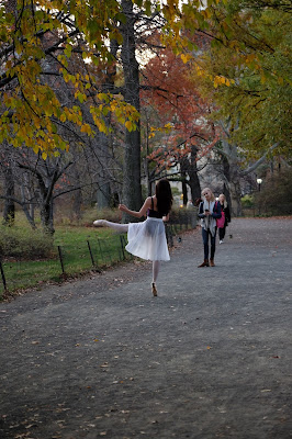 This is still going on in Central Park towards the very end of November