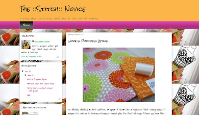 The ::Stitch:: Novice blog