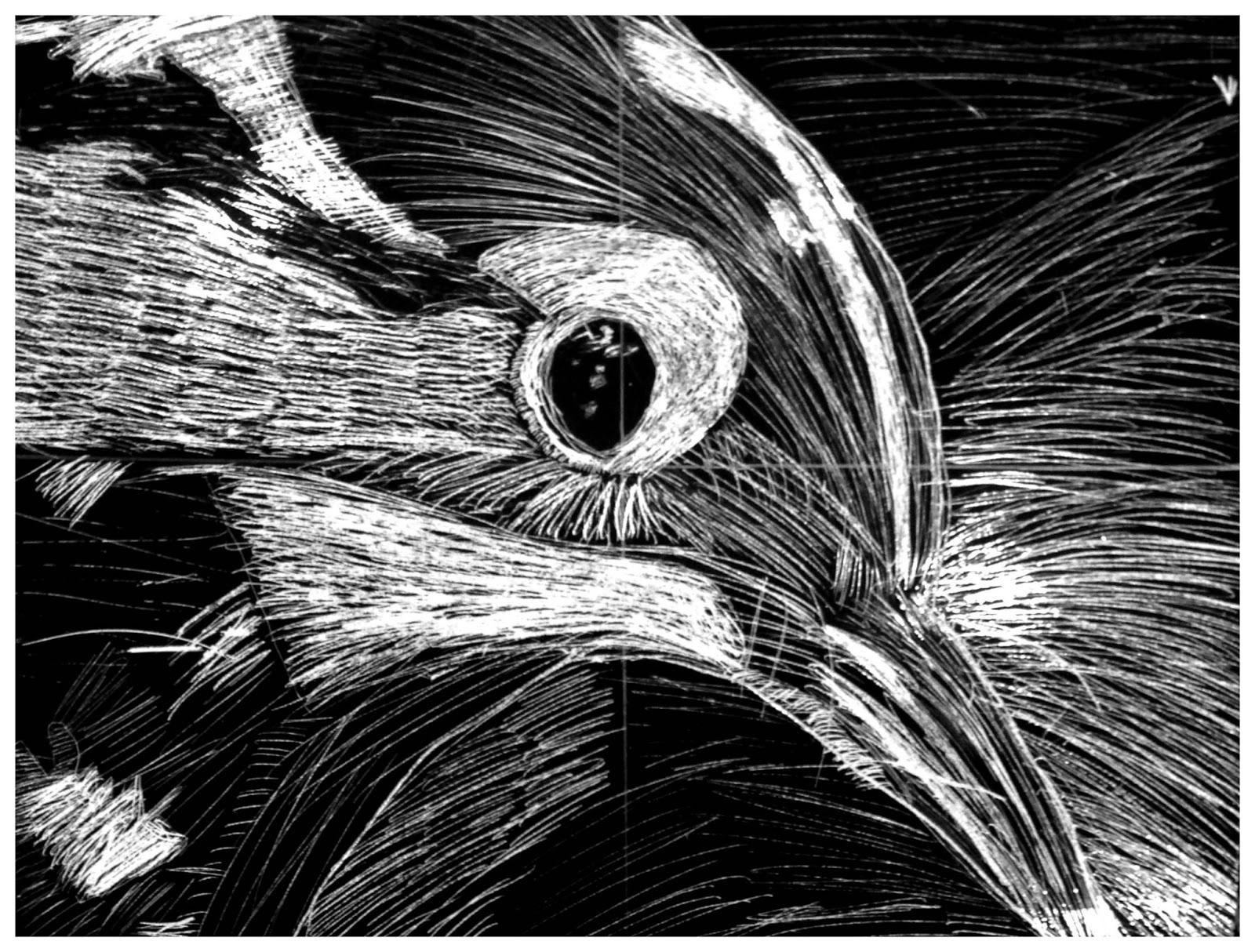 open window school art  5th grade animal etchings