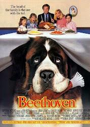 Baixe imagem de Beethoven, o Magnífico (Dublado) sem Torrent