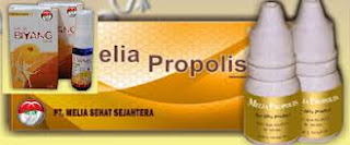 grosir propolis