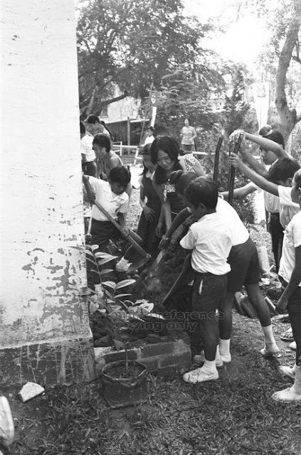 "gotong royong campaign Below is an example of a gotong royong project at bukit panjang description and photo from the national archives picas collection dated 28 june 1973 singapore's ""keep our water clean"" campaign got off to a good start when 300 young men began a two-day operation to de-silt the sungei pang sua in bukit panjang."