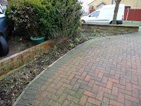 A tidy garden