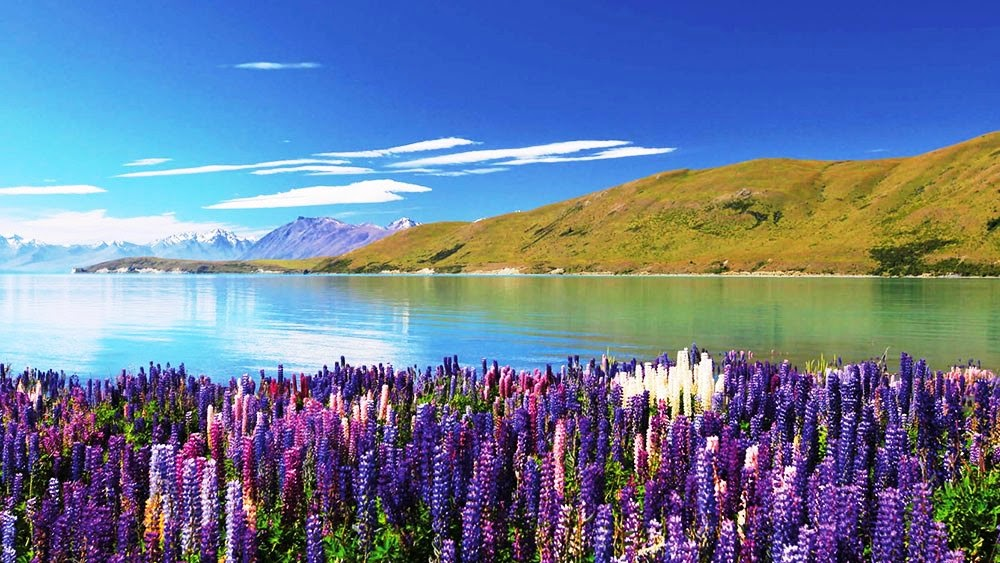 Beautiful Places In New Zealand South Island