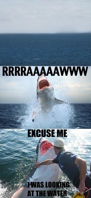 RAWWWW - Excuse Me