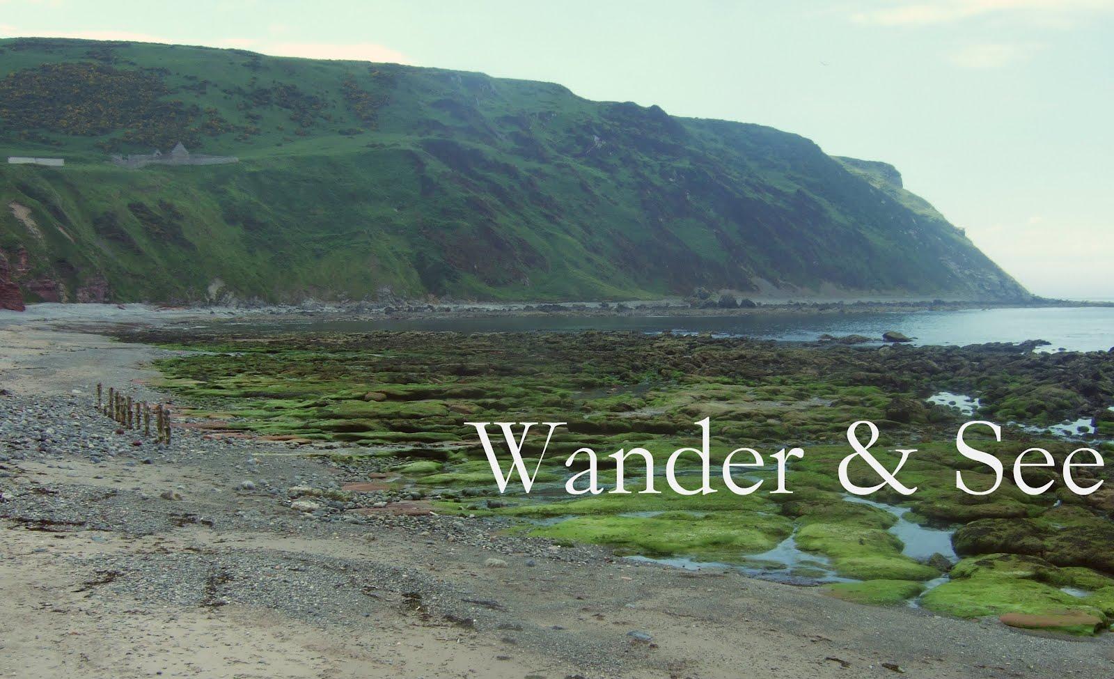 Wander & See