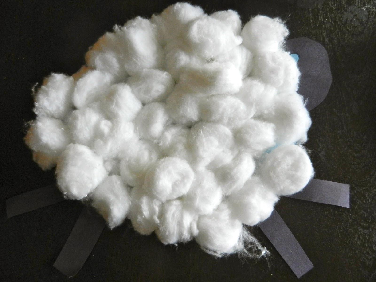 Painted Kiwis: cotton ball sheep