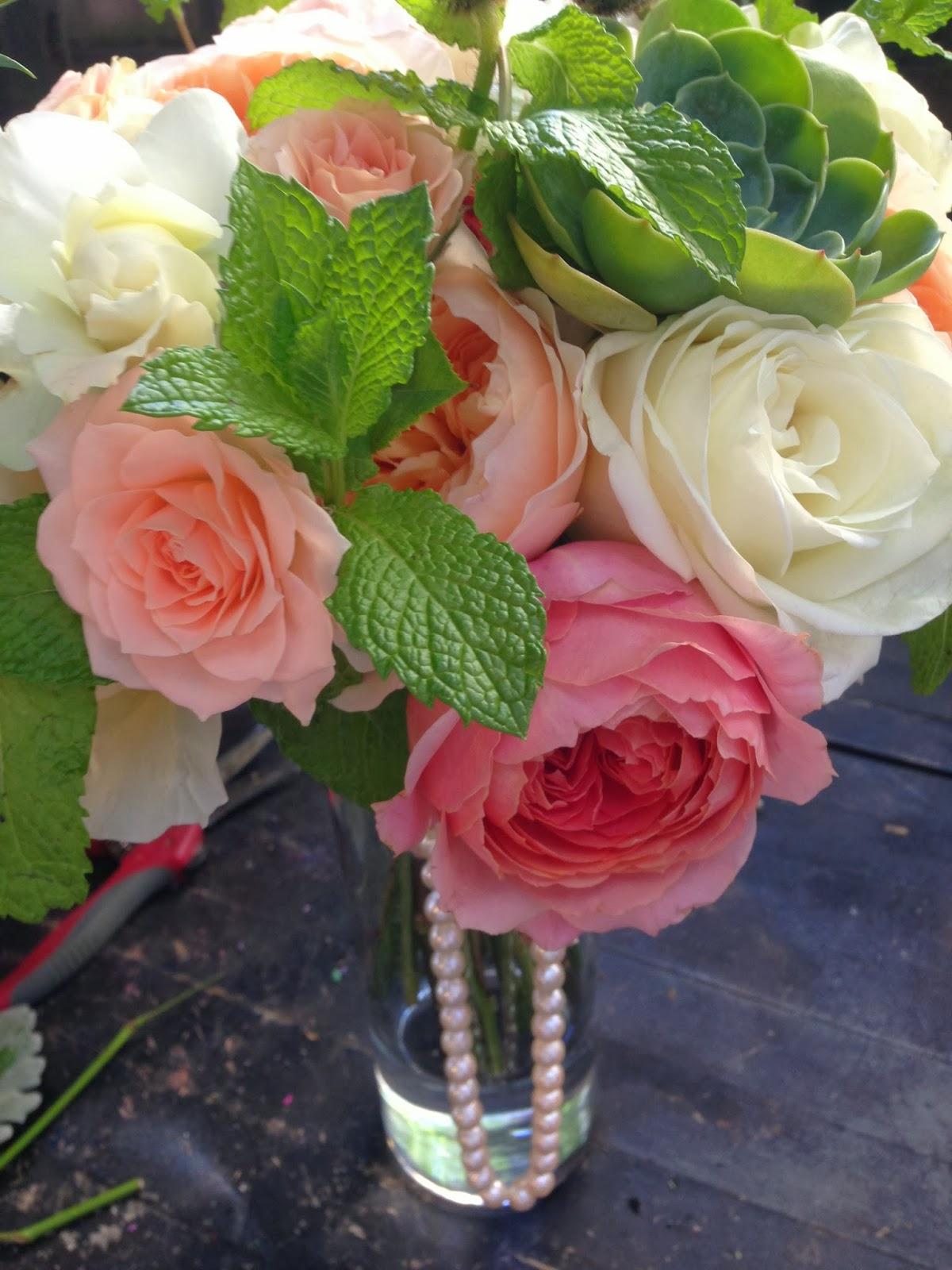 Coral Garden Rose pico soriano designs: peach and coral garden rose and succulents