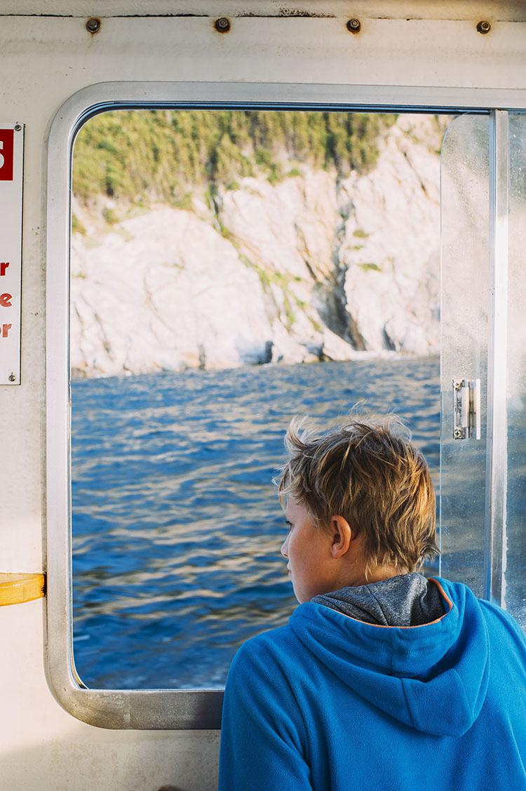 Whalewatching Cape Breton New Brunswick