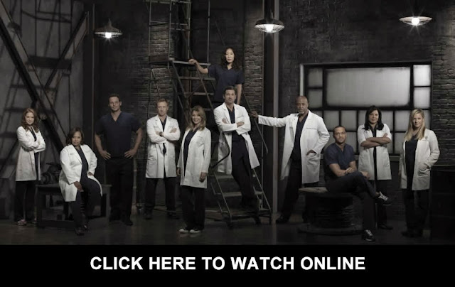 http://tvpassonline.blogspot.com/2013/11/watch-greys-anatomy-season-10-episode-9.html