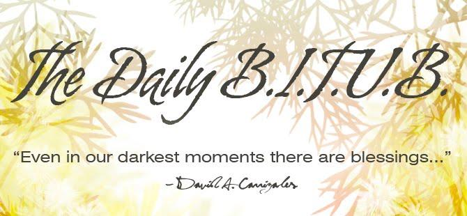 The Daily B.I.T.U.B.