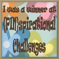 Winner at (PIN)spirational Challenges