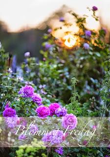 http://blandrosorochbladloss.blogspot.se/2014/10/det-var-det-dar-med-farger.html