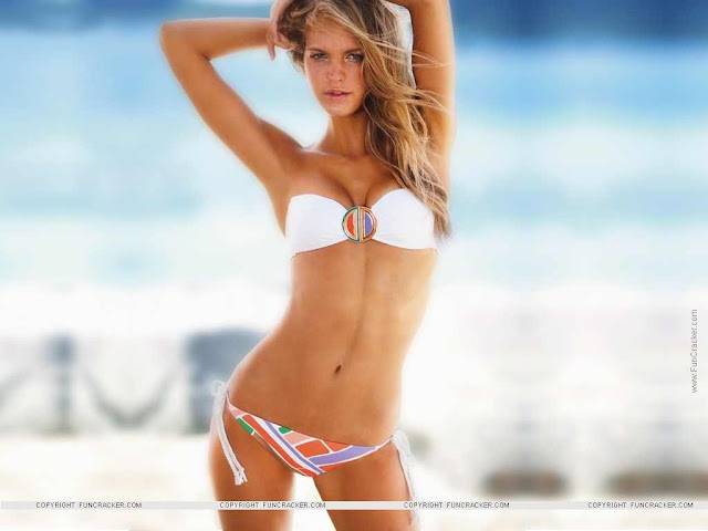 Erin Heatherton  sexy in swimsuit on the beach