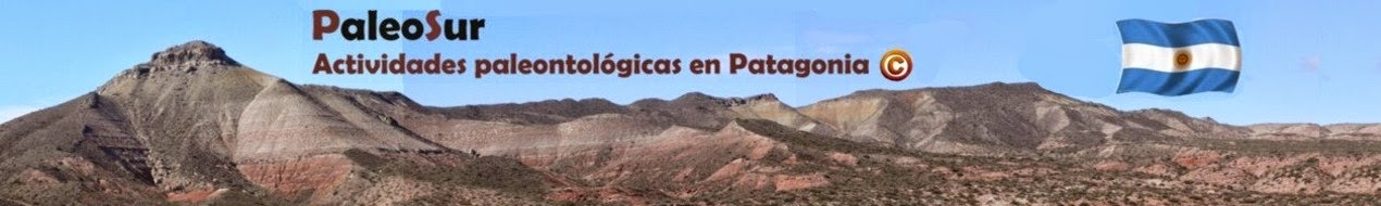 Paleosur
