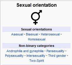 wiki demographics sexual orientation