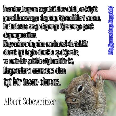 İnsanlar, hayvan ve bitkiler dahil, en küçük  yaradılana saygı duymayı öğrendikleri zaman,  birbirlerine sevgi duymayı öğrenmeye gerek  duymayacaklar.  Hayvanlara duyulan merhamet derinlikli  olarak iyi huylu olmakla eş değerdir,  ve emin bir şekilde söylenebilir ki; Hayvanlara acımasız olan  iyi bir insan olamaz. Albert Scheweitzer Türkçe Tercümesi When man learns to respect even the smallest creation, whether animal or vegetable nobody has to teach him to love his fellow man. Compassion for animals is intimately connected with goodness of character, and it may be confidentially asserted that he who is cruel to animals cannot be a good man.