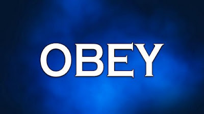 Obeying Without Questioning, Open Heavens, Open Heavens Devotional, Daily Devotion, Key Point, Action Point