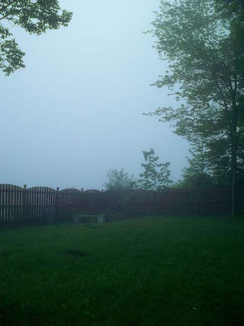 No visibility in this early morning fog