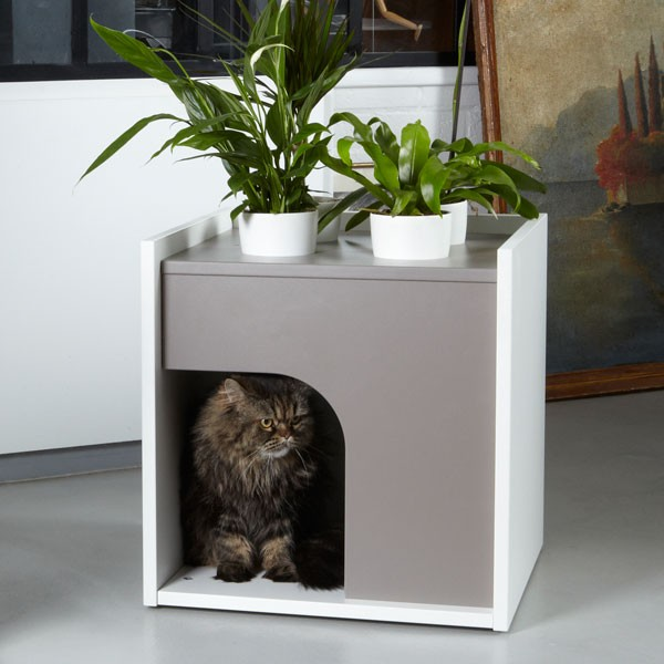 How About A Green House For Your Dog Or Cat Modern Indoor
