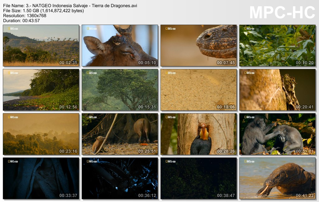 4GB|NATGEO HD|Indonesia Salvaje|3-3|HD 720p|Mega