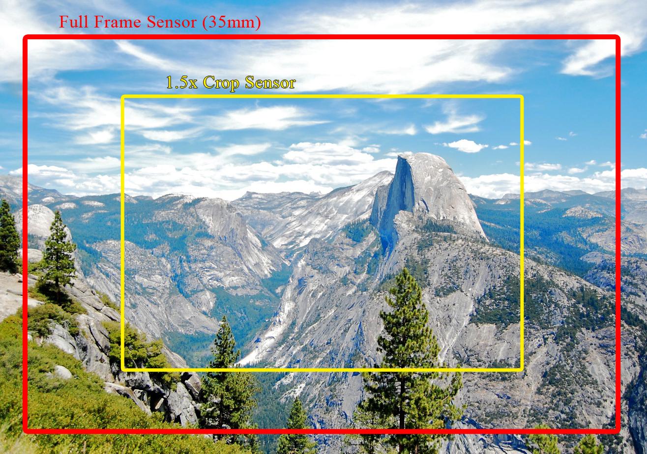 full frame sensor crop sensor full frame digital camera sony a99