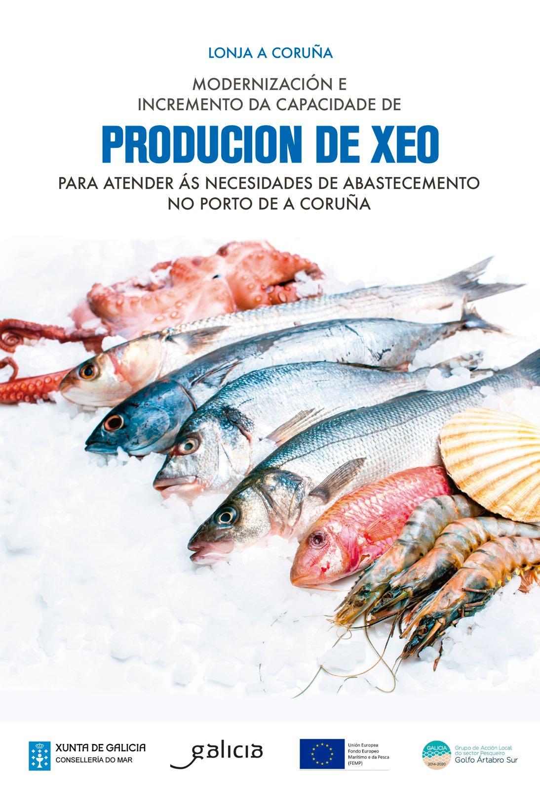 Proxecto Modernización e incremento da capacidade de produción de xeo  Lonxa de A Coruña