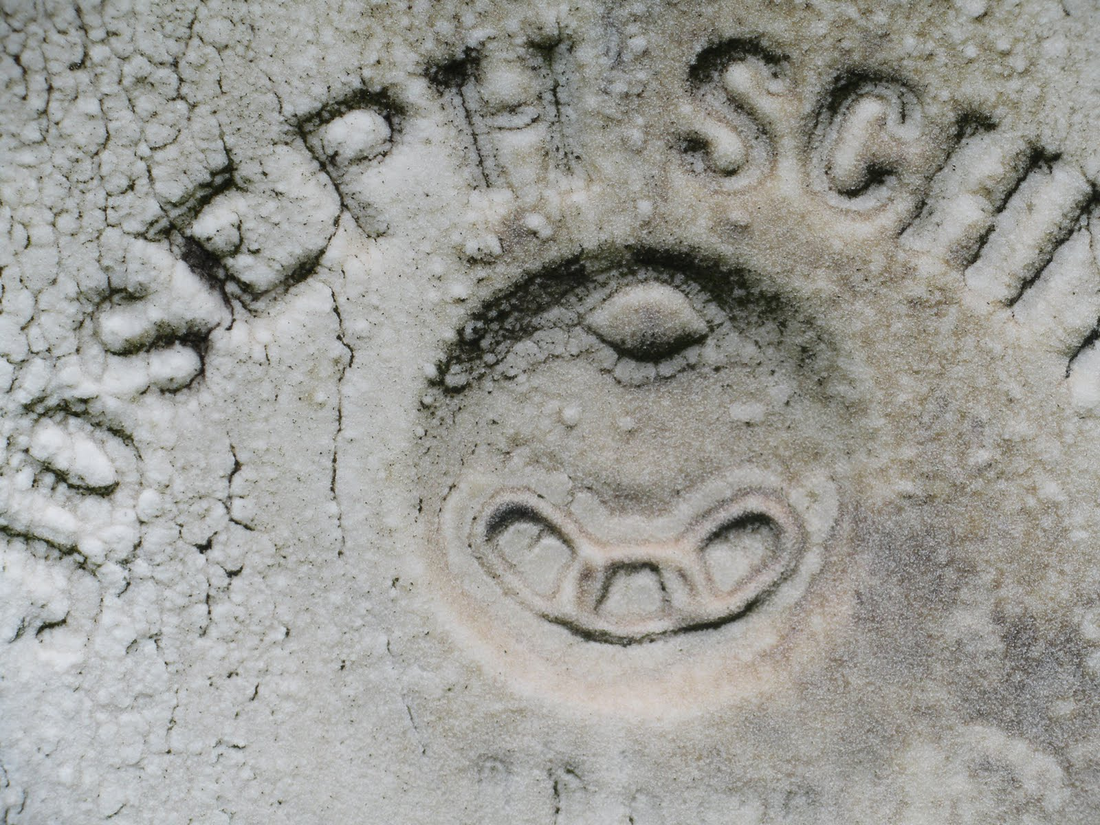 Engraved independent order of odd fellows dunmore cemetery dunmore pa biocorpaavc Image collections