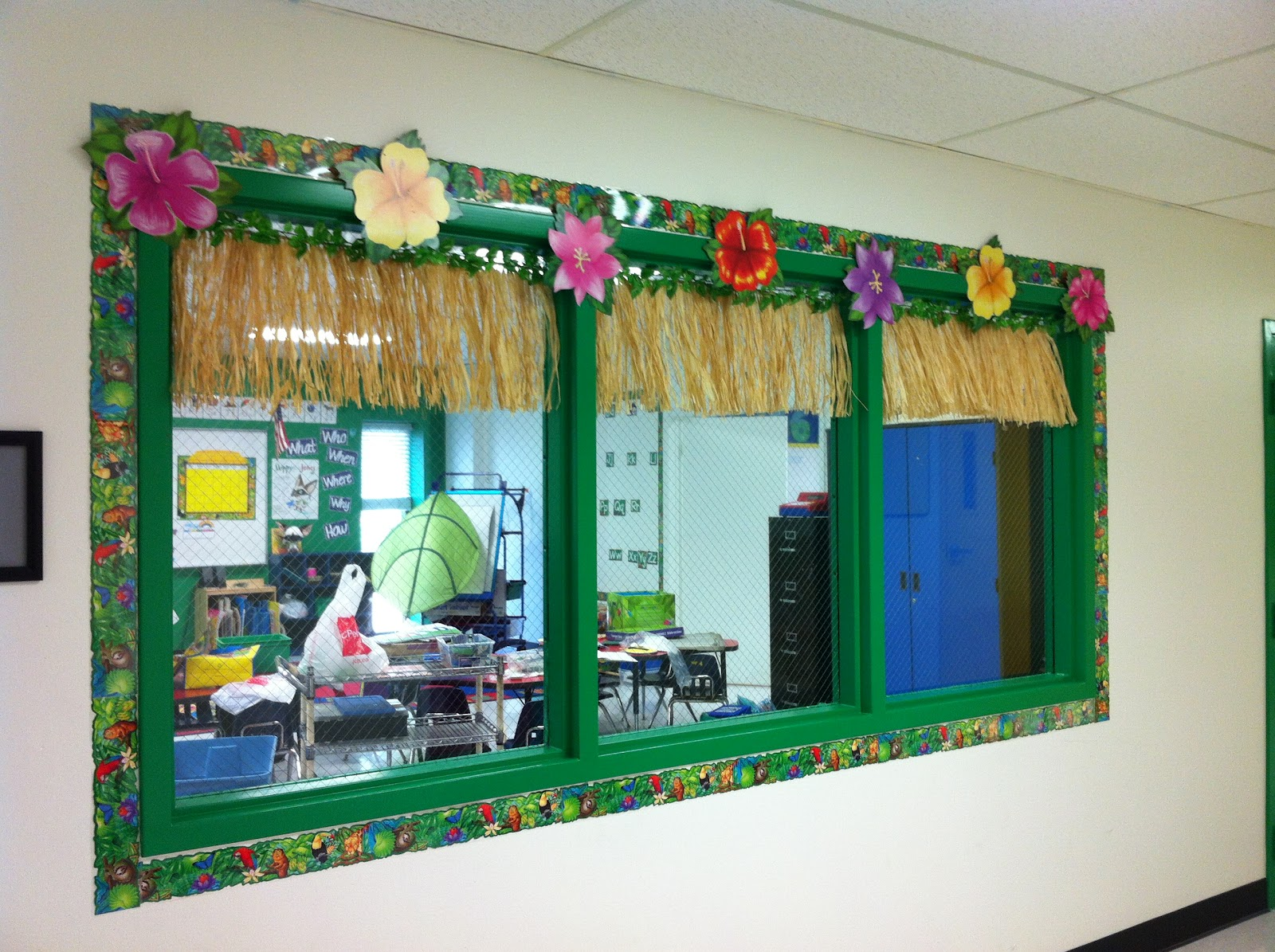 Classroom Window Ideas : Miss a s kindergarten my little jungle of classroom