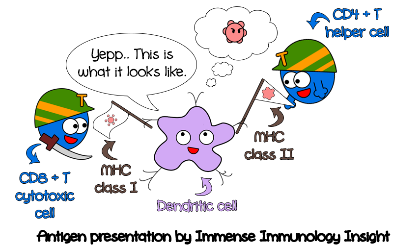 thesis immunology