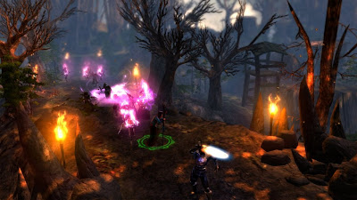 Dungeon Siege 3 Screenshots 2