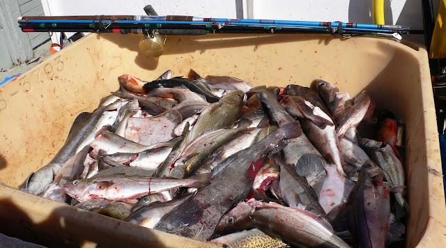 что брать из продуктов рыбакам