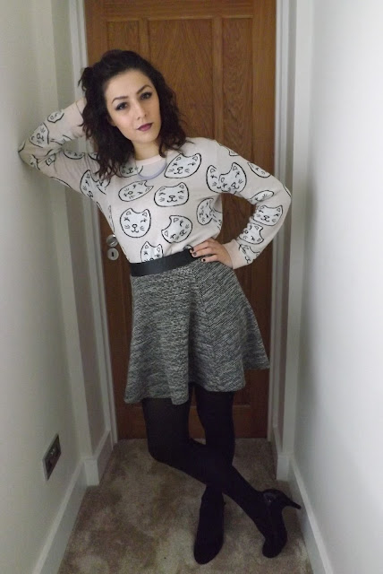 What Cat Wore | The Cat Jumper