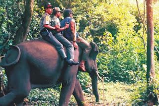 Liburan ke Taman Nasional Way Kambas