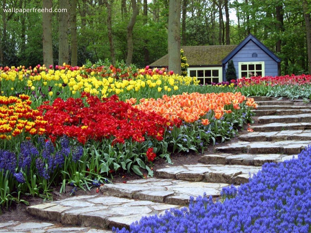 Backyard flower garden designs 2017 2018 best cars reviews for Beautiful flower landscapes