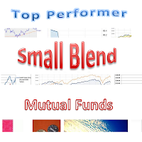Top Performer Small Blend Mutual Funds December 2012