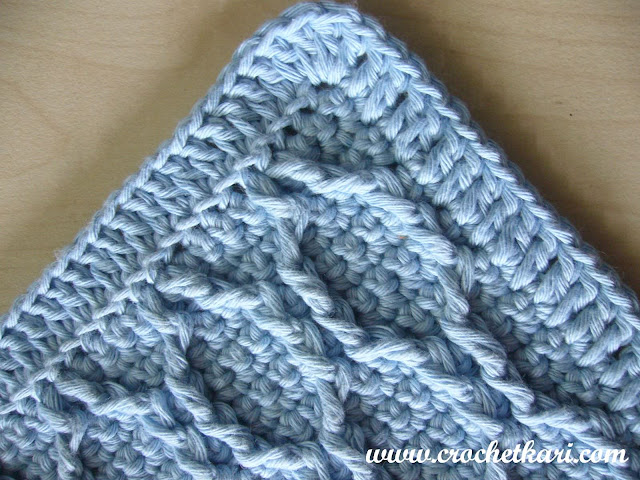 Crochet washcloth edging.