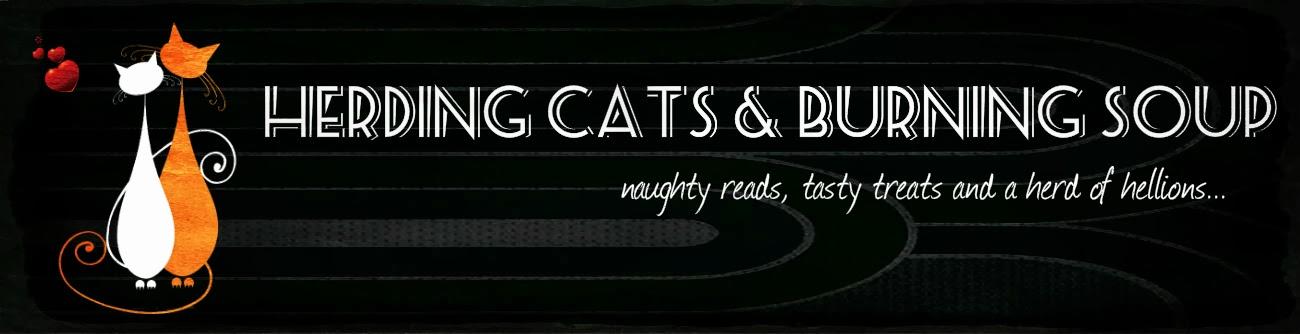 http://www.herdingcats-burningsoup.com/
